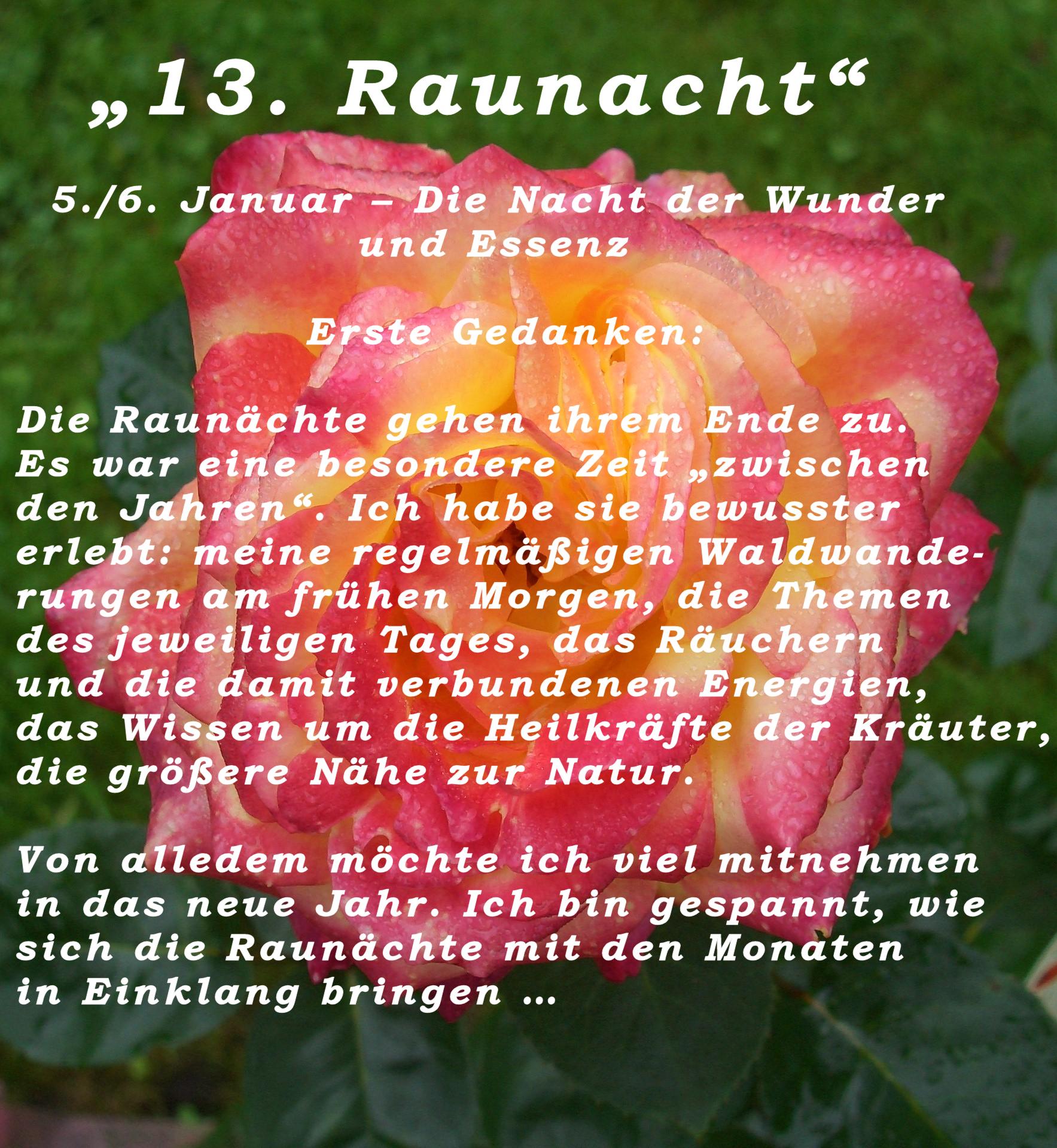 13teRaunacht1